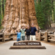 Family is posing in Sequoia national Park with old huge Sequoia — Stock Photo #5802184