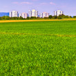 Housing area in rural landscape with fields — Stock Photo