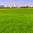 Stock Photo: Housing area in rural landscape with fields