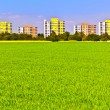 Housing area in rural landscape with fields — Stock Photo #5807843