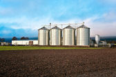 Silo in beautiful landscape — Stock Photo