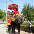 tourists on an elefant ride in ajutthaja — Stock Photo #5815594