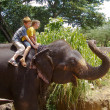 Boys riding on the back of an elephant — 图库照片