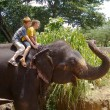 Stock Photo: Boys riding on the back of an elephant