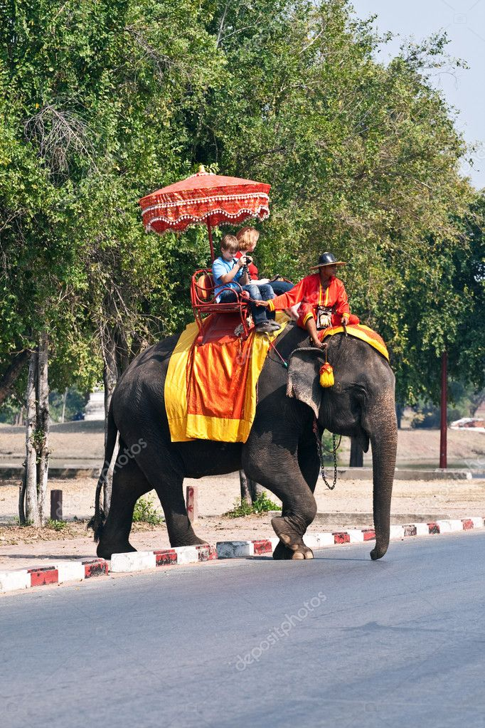 Tourists on an elefant ride  in Ajutthaja  Stock Photo #5815499
