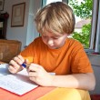 Boy doing homework for school at home — Stock Photo #5827080