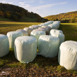 Bale of straw infold in plastic film — Stock Photo
