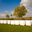 Stock Photo: Bale of straw in autumn in intensive colors