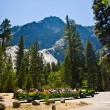 Tourists are discovering the romantic valley of yosemite park in a tourist — Stock Photo