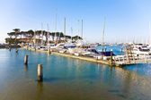 Marina in San Francisco with boats in beautiful weather — Stock Photo
