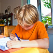Boy doing his homework at home — Stok fotoğraf