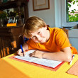 Stock Photo: Boy doing his homework at home