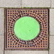 A manhole cover in the street to enter the canalisation — Stock Photo #5939448