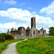 Famous Quin Abbey in Ireland - Stock Photo