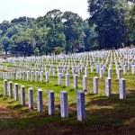 Headstones at the Arlington national Cemetery — Stock Photo