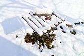 在冬季花园雪覆盖表 — 图库照片