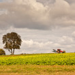Tractor with plow on field - Foto Stock
