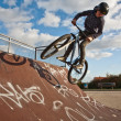 Boy with bike at the skate park — Stock Photo