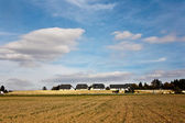 Newly ploughed fields with beautiful blue sky at the horizon — Stock Photo