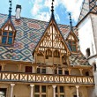 Famous hospice in Beaune, France — Stock Photo #6174429
