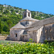 Cloister of Senanque Abbey, Vaucluse, Gordes, Provence, France - Stock Photo