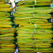 Palm leaves on the flower herbs market, early morning in Bangkok — Stock Photo
