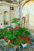 Beautiful blooming pot flowers in the old caste — Stock Photo