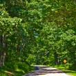 Beautiful scenic country road curves through Shenandoah  National Park. — Stockfoto