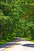 Beautiful scenic country road curves through Shenandoah National Park. — Stock Photo