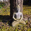 Stone buddha meditation in front of a cherry tree — Stock Photo