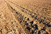 Closeup of a plowed field prepared for new planting. — Stock Photo