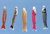 Pipas de carpa japonesa — Foto Stock