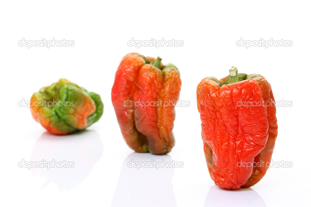 Red chill pepper on white background — Stock Photo #5507963