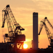 Stock Photo: Cranes and sunset