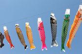 Pipas de carpa japonesa — Fotografia Stock