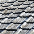 Old roof tiles — Stock Photo #5662110