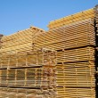 Lumber yard — Stock Photo
