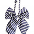 Stock Photo: Striped bow tie for women