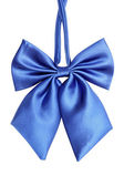 Blue bow tie for women — Stock Photo