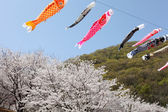 Japanese carp kites — Stock Photo