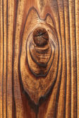 Knotted wood texture — Stock Photo