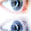 Blue eye in macro with earth map — Stock Photo