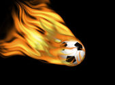 Soccer ball surrounded by flames — Stock Photo