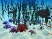 Under water — Stock Photo