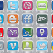 Silver Social Inset Icons - Stock Vector