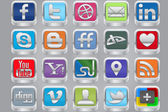 Silver Social Inset Icons — Stock Vector
