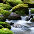 Mossy River Rocks — Stock Photo