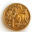 AustraliOne Dollar Coin — Stock Photo #5525409