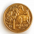 Australian One Dollar Coin - Stock Photo