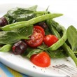 Spinach and Bean Salad — Stock Photo